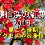 鶴仙渓の紅葉2018の見ごろ時期は?電車や車のアクセスや渋滞情報も