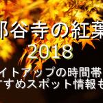那谷寺の紅葉2018のライトアップの時間帯やおすすめスポット情報も!