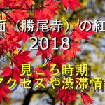 箕面(勝尾寺)の紅葉2018の見ごろ時期は?電車や車のアクセスや渋滞情報・ライトアップの時間帯