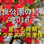 奈良公園の紅葉2018の見ごろ時期は?電車や車のアクセスや渋滞情報も