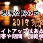 上野恩賜公園のお花見2019!桜のライトアップはある?時間帯や期間と混雑状況も