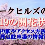 アークヒルズの桜2019の開花状況!最寄り駅やアクセス方法は?周辺駐車場の情報も