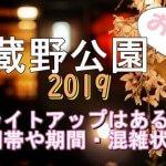 武蔵野公園の桜2019のライトアップはある?時間帯や期間と混雑状況も