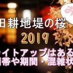 塩田耕地堤の桜2019のライトアップはある?時間帯や期間と混雑状況も