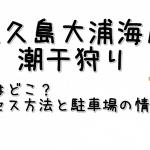 佐久島大浦海岸の潮干狩りはどこ?アクセス方法と駐車場の情報も!