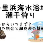 千里浜海水浴場の潮干狩りはいつからいつまで?期間や料金と潮見表の情報も!