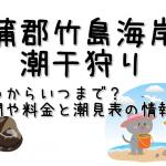 蒲郡竹島海岸の潮干狩りはいつからいつまで?期間や料金と潮見表の情報も!