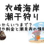 衣崎海岸の潮干狩りはいつからいつまで?期間や料金と潮見表の情報も!
