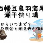 西幡豆鳥羽海岸の潮干狩りはいつからいつまで?期間や料金と潮見表の情報も!
