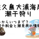 佐久島大浦海岸の潮干狩りはいつからいつまで?期間と料金と潮見表の情報も!