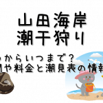 山田海岸の潮干狩りはいつからいつまで?期間と料金と潮見表の情報も!
