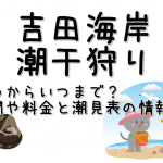 吉田海岸の潮干狩りはいつからいつまで?期間や料金と潮見表の情報も!