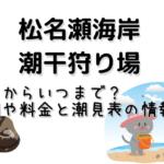 松名瀬海岸の潮干狩りはいつからいつまで?期間や料金と潮見表の情報も!